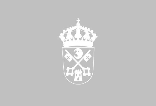Eficiencia enerxética no alumeado público Filgueira, Pousa (Angudes), Mon y Landa (Crecente) e Prado (Villar)